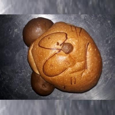 Roti Kura Kura
